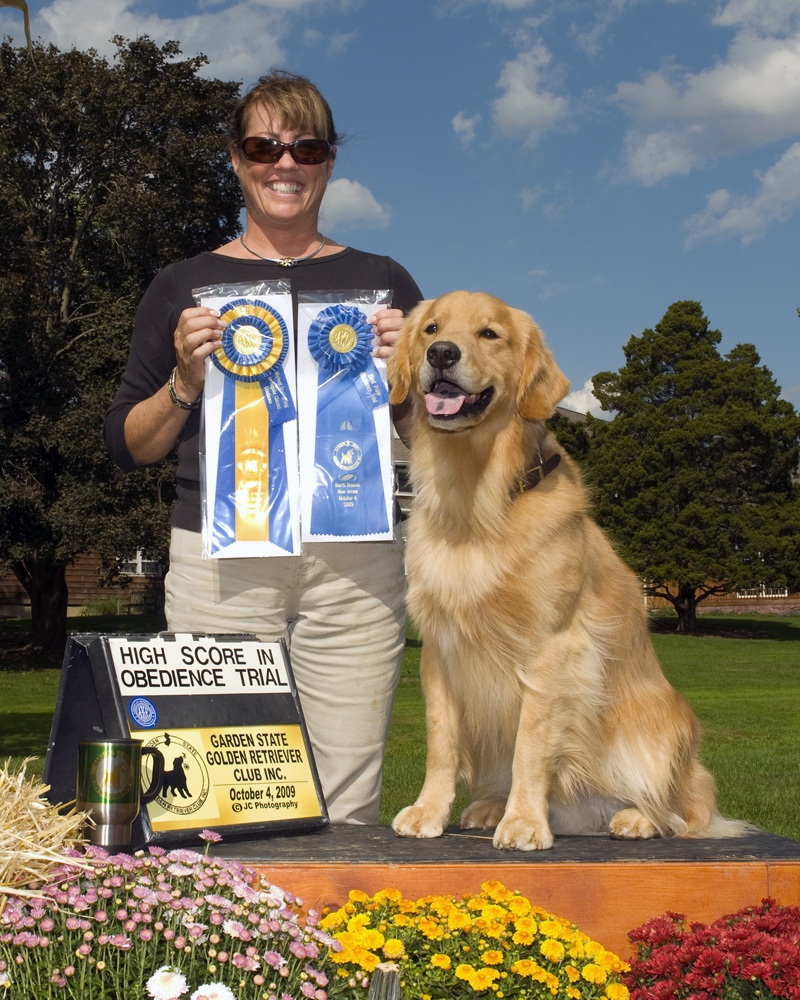 Golden retriever club judging list