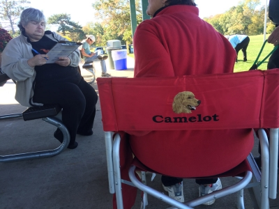 CCA: Camelot Kennels