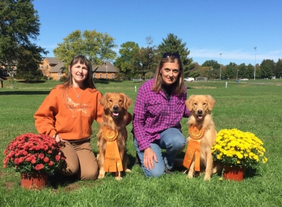 CCA: Dogs look good in orange!